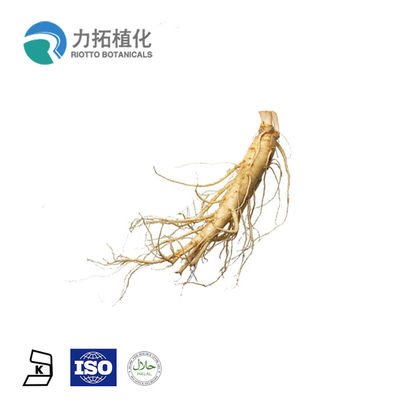 China High Quality panax ginseng extract,ginseng root extract organic nutritious health benefits supplier