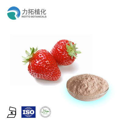 China 100% Organic Certificate Bulk Freeze Dried Powder Fragaria x ananassa Duch supplier