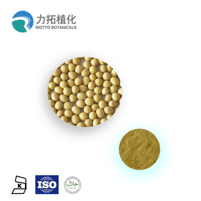China Anthocyanins Soybean Extract Powder / Plant Powder 20% - 80% Soy Lsoflavones supplier