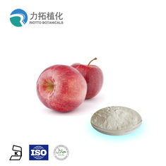 China Natural Fruit Extract Organic Plant Powder Polyphenols 50% / 70% / 75% Antioxidant supplier