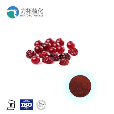 China Pure Anthocyanidins Cranberry Extract / Fruit Extract 5% - 25% Resisting Cancer supplier