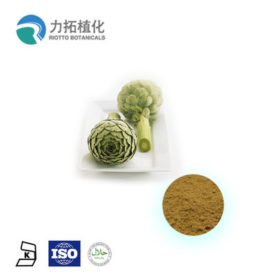 China Cynarin 100% Natural 5% Organic Plant Powder 5% HPLC In Food And Medicine supplier