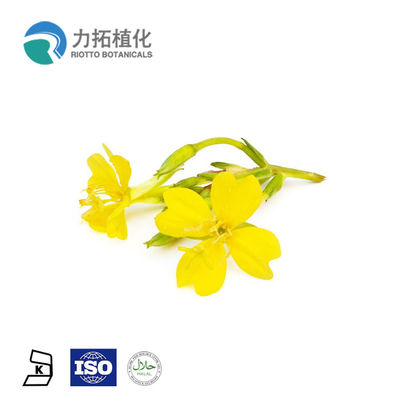 China 100% Natural Organic Evening Primrose Oil Liquid Anti-Inflammatory For Skin supplier