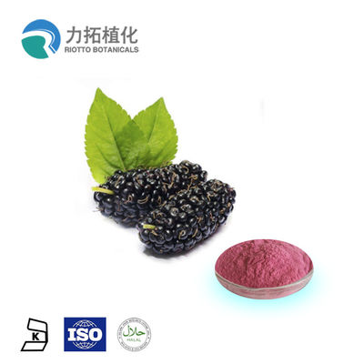 China Morus Alba L Plant Extract Powder Mulberry Extract 1 - Deoxynojirimycin (DNJ) supplier