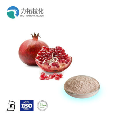China 100% Natural Fresh Pomegranate Powder Punica Granatum L HPLC UV 10% - 90% supplier