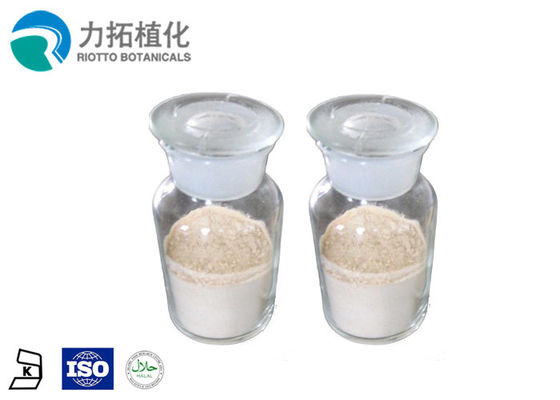 China Sports Nutrition Vegan Protein Powder Active Food Supplement Organic Rice Protein supplier