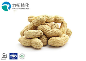 China 50% Protein Sunflower Kernels Nutrition / Extract Plant Natural Flavor And Odor supplier