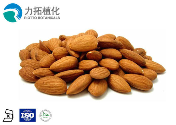 China Food Grade Plant Protein Powder Apricot Kernel Seed Extract In Medicine supplier
