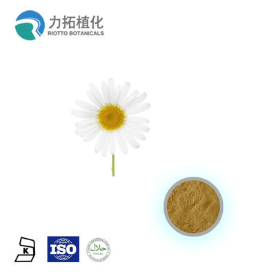 China Herbal Plant Extract Powder Feverfew Extract Powder Parthenolide 0.3-0.8% supplier