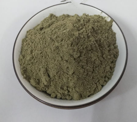 China Pain Relief Plant Extract Powder Urtica Cannabina Organic Nettle Powder supplier