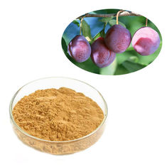 China Fruit Part Kakadu Plum Extract Natural Herbal Extract Light Brown Color supplier