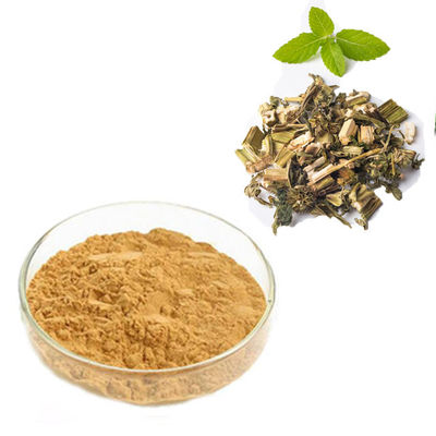China Pharmaceutical Grade Plant Extract Powder Motherwort Extract 98% Purity supplier