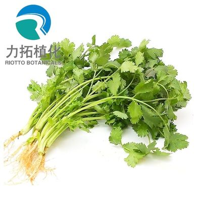 China Brown Fine Plant Extract Powder Parsley Extract Powder Root Part HPLC UV Test Method supplier