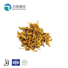 China Anti Tumor Coptis Root Extract Berberine 10% - 98% Alkaloids 5% 10% Brown Yellow Color supplier