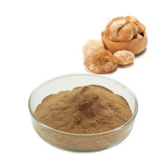 China Brown Yellow Fine Chemical Intermediate Lion'S Mane Mushroom Extract Powder supplier