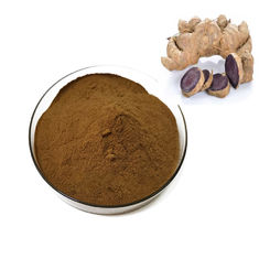 China Health Care Grade Plant Extract Powder Black Ginger Extract Powder Root Part supplier