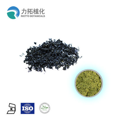 China Spirulina Platensis Organic Spirulina Powder / Plant Based Powder Amino Acids factory