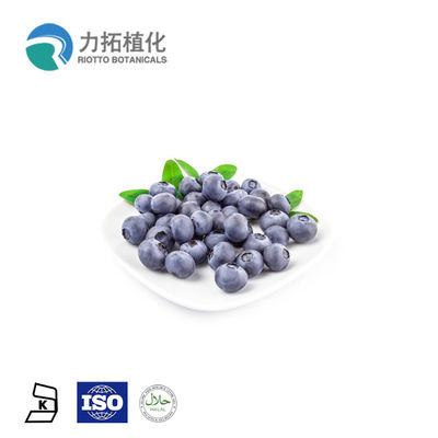 China Herbal Extract Black Bean Extract / Fruit Extract Powder 5% - 25% HPLC UV distributor