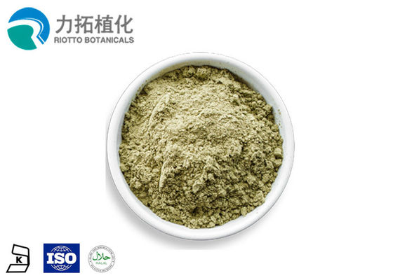 China Heart / Brain Protection Organic Protein Powder  Hempseed Protein 50% 60% distributor