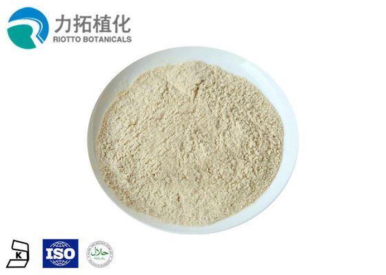China Rice Protein Powder 80% Min Non - Allergen distributor