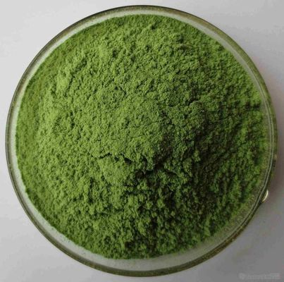 China 100% Natural Alfalfa Grass Powder Purify Liver , Improving Digestion distributor