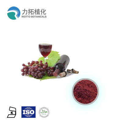 Plant Extract Powder
