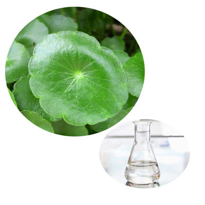China Pure Natural Centella Asiatica Gotu Kola Liquid Improving Blood Circulation distributor