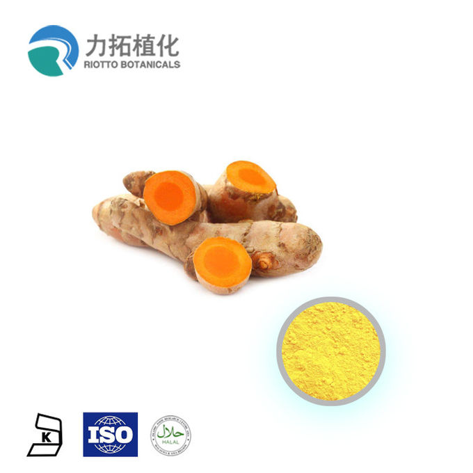 ISO factory supply of China organic nutritious health benefits curcumin extract 95%